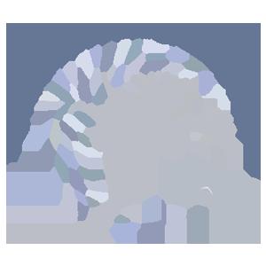 logo_ADAU